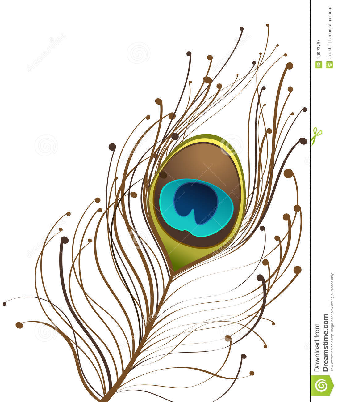 hight resolution of peacock clipart free