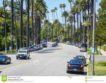 Beautiful Street View With Palm Trees In Beverly Hills