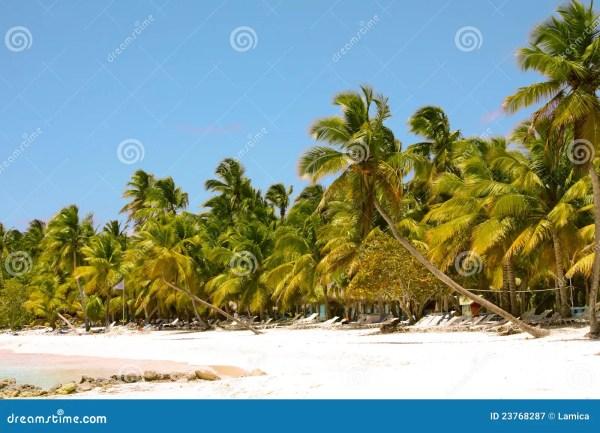 beautiful tropical landscape royalty