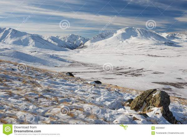 Beautiful Winter Landscape Altai Mountains Russia. Stock - Of Frozen Forest 63239687