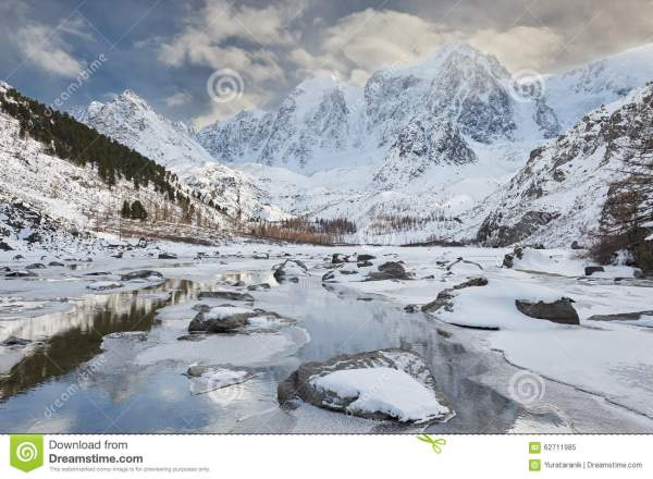 Beautiful Winter Landscape Altai Mountains Russia. Stock - Of Forest