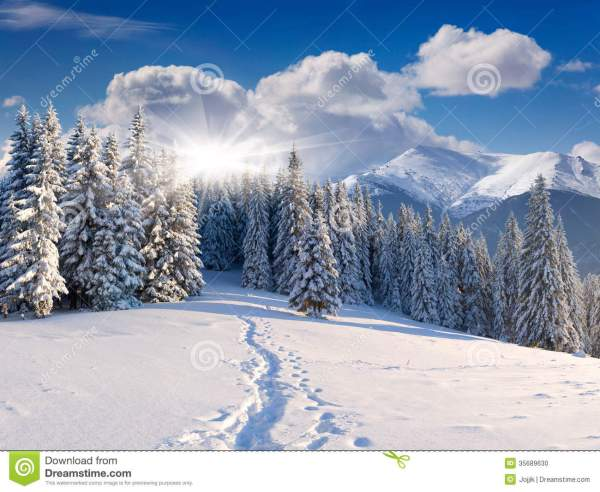 Beautiful Winter Landscape In Mountains Stock - Of Path Natural 35689630
