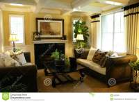 Beautiful Yellow Living Room Stock Image - Image: 9230987