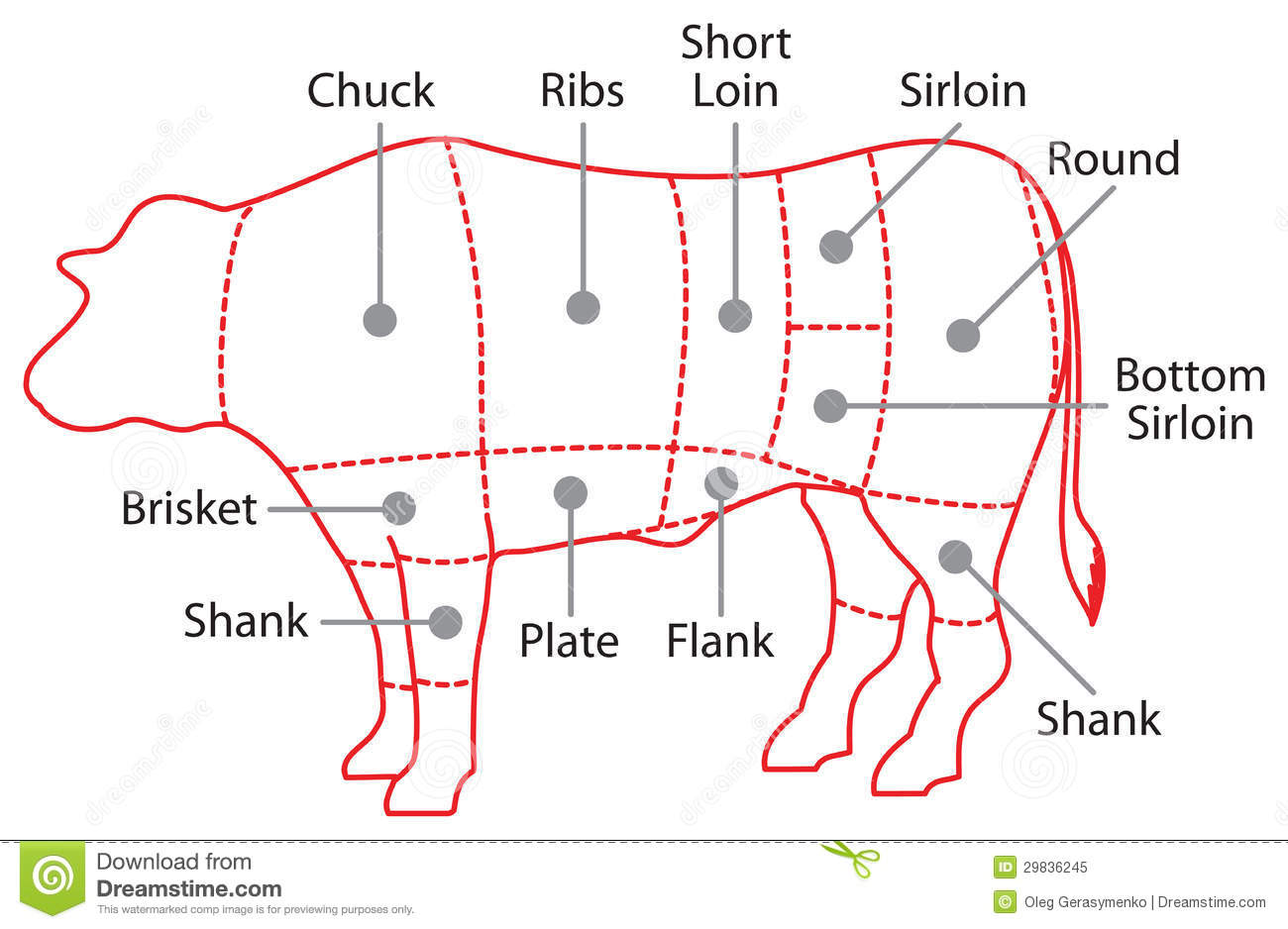 cow meat diagram wiring for ge refrigerator beef chart poster royalty free stock photo image 29836245