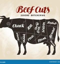 beef cuts diagram vector illustration for design menu restaurant or diner [ 1300 x 1103 Pixel ]