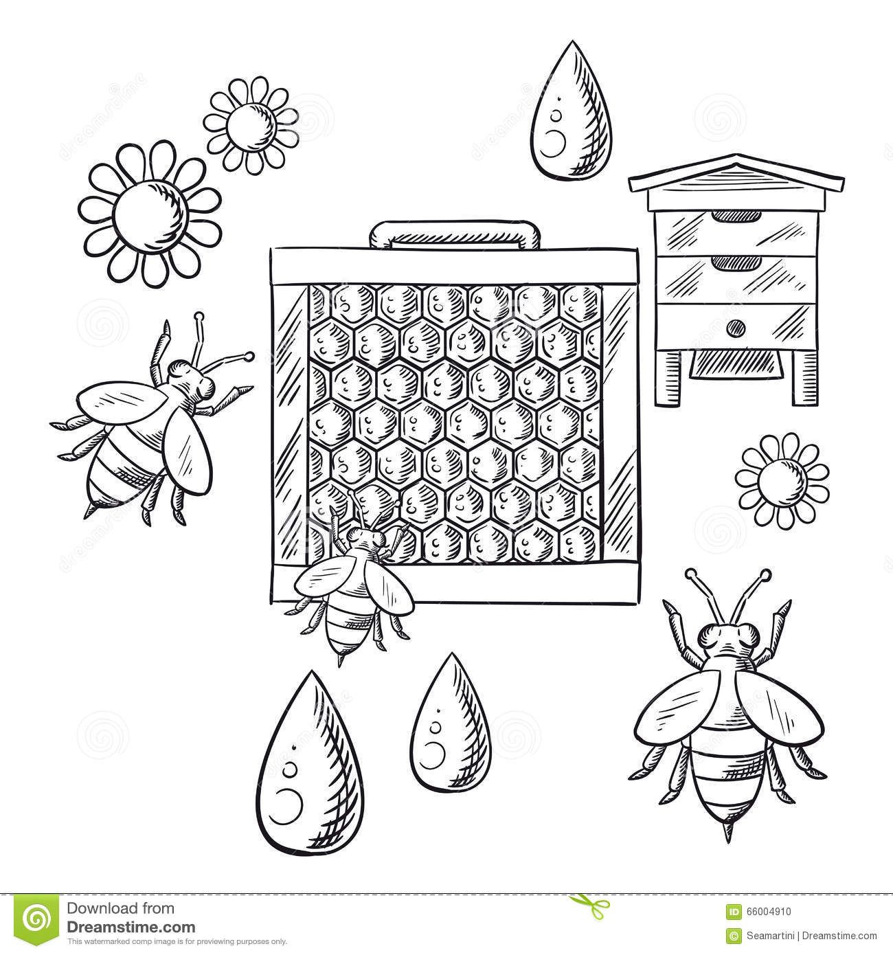 Beekeeping And Apiary Sketched Objects Stock Vector