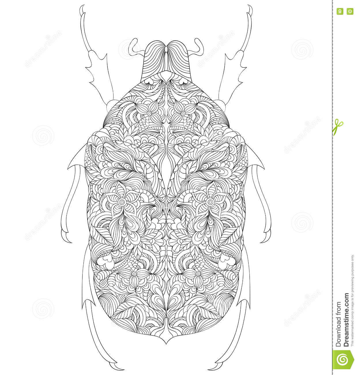 Beetle On White Background Stock Vector