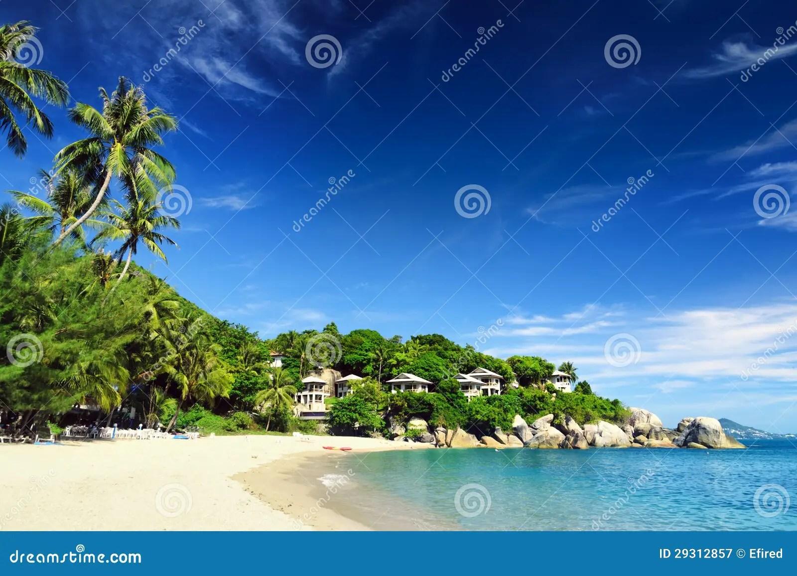 Bello Paesaggio Tropicale Isola Di Samui Tailandia