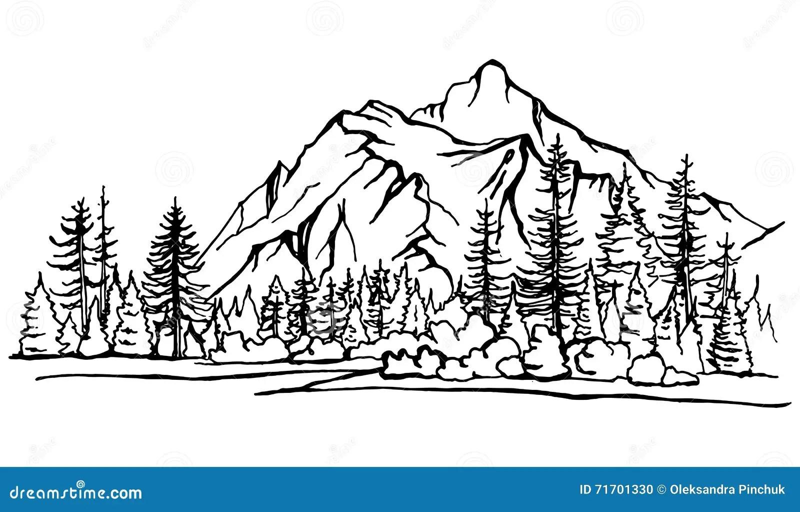Berglandschaft Waldkieferskizze Vektor Abbildung