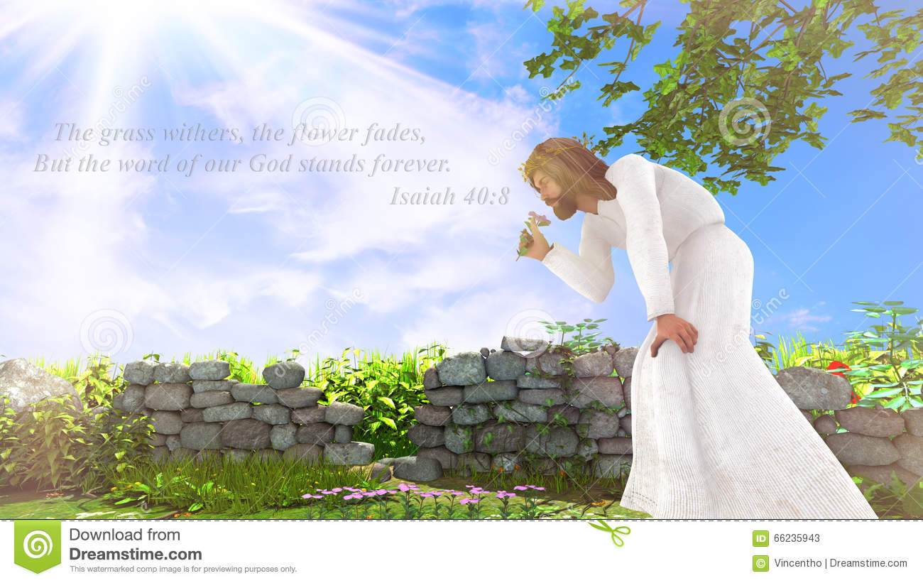 Bible Verse Of Isaiah 40 8 Stock Illustration