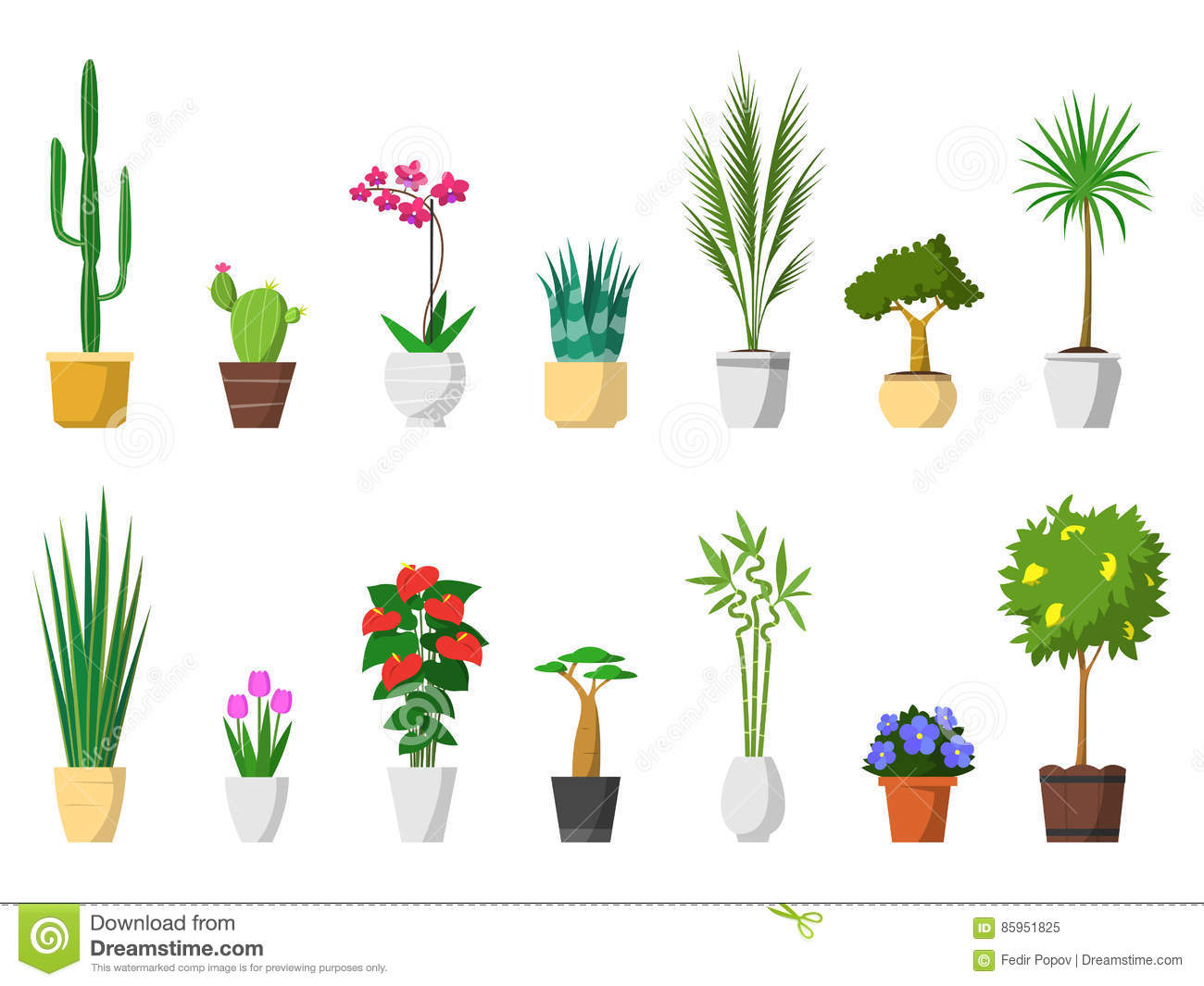 Big Set Of Decorative House Plants With Pot Isolated Stock