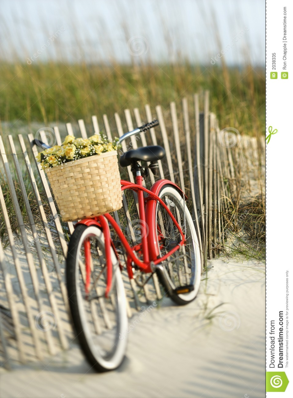 the bike chair satin sashes leaning against fence at beach. royalty free stock photo - image: 2038335