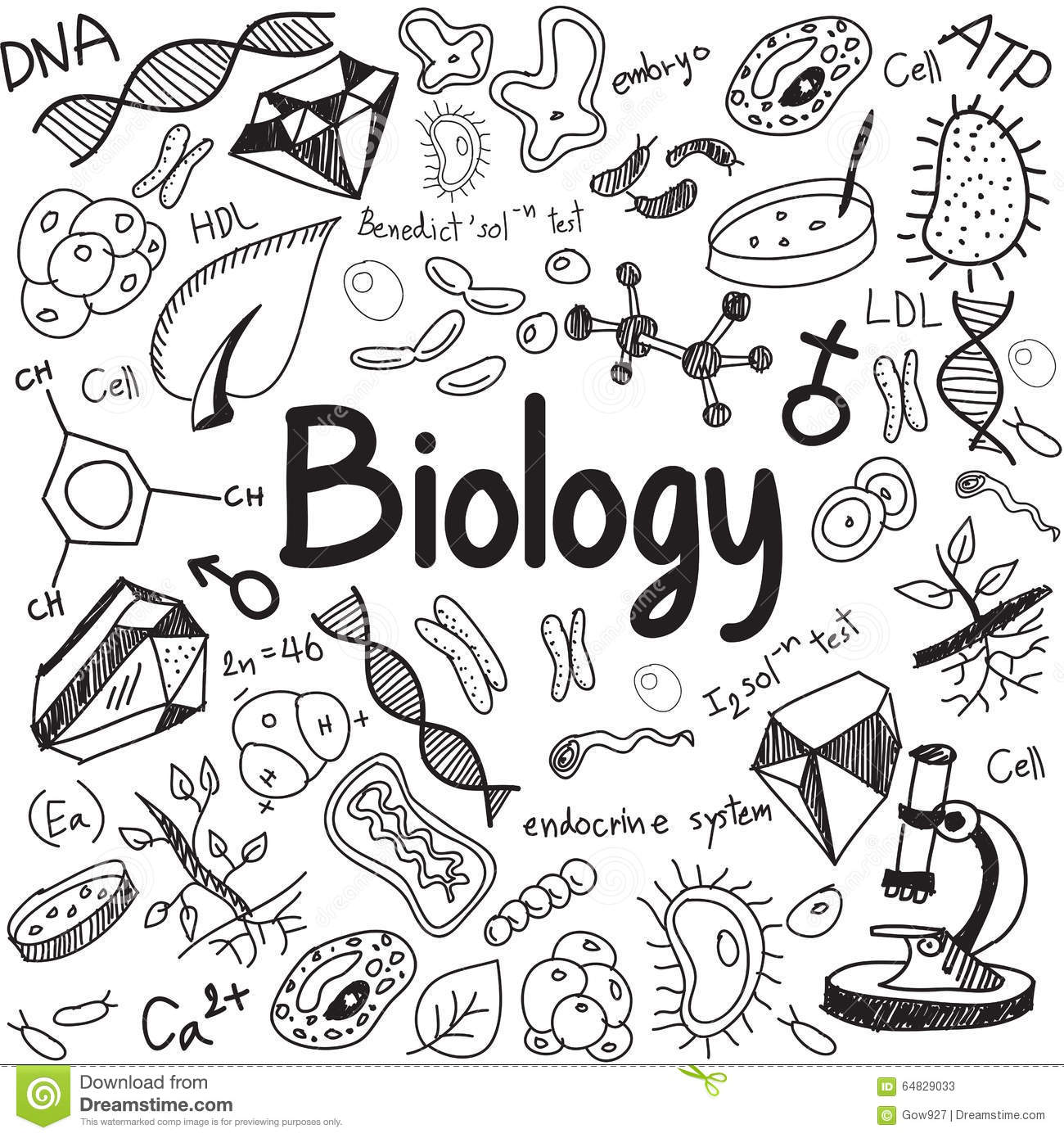 Biology Science Theory Doodle Handwriting And Tool Model