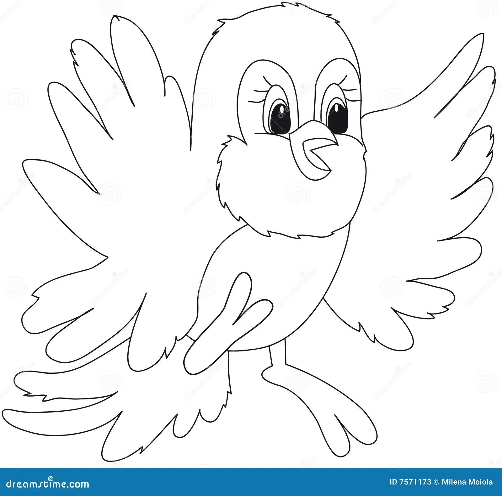 Bird Illustration Cartoon Stock Illustration Image Of