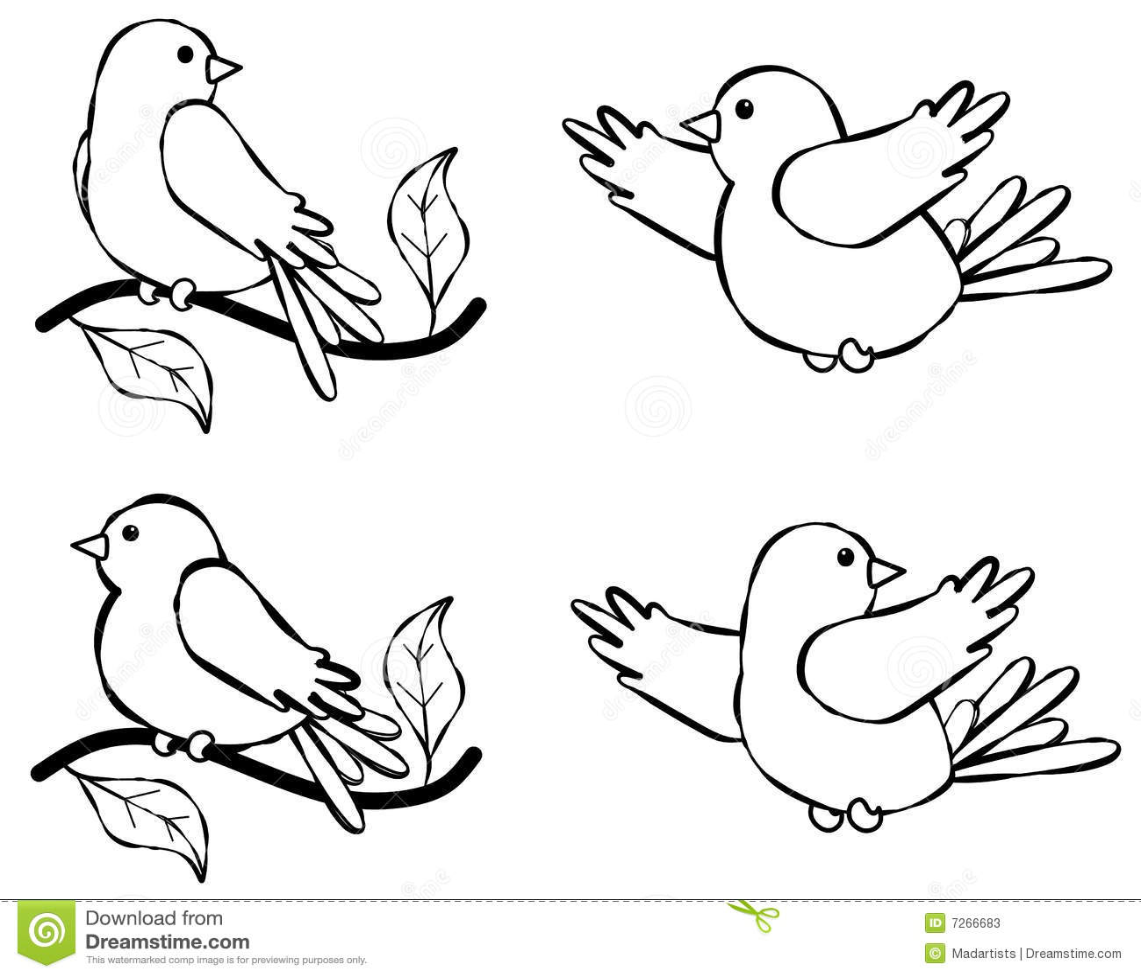Bird Line Art Illustration 2 Stock Illustration
