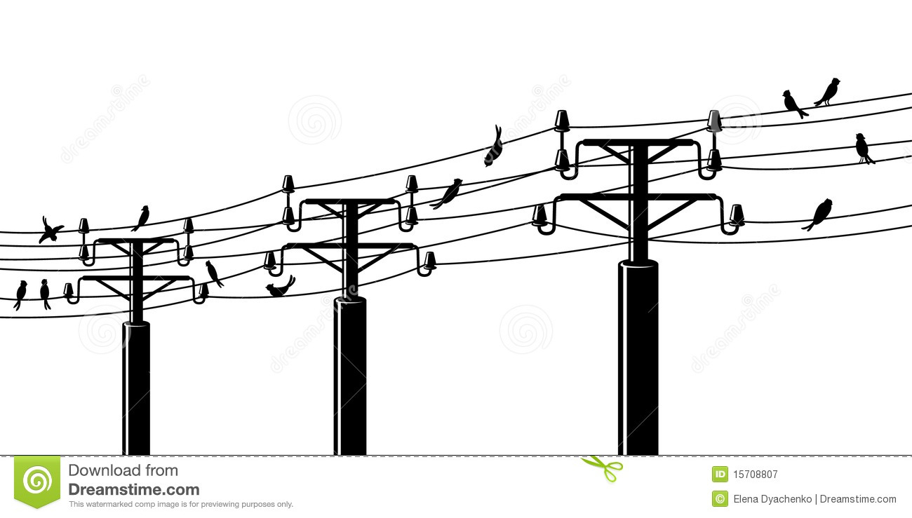 Birds on powerlines stock vector. Illustration of cable