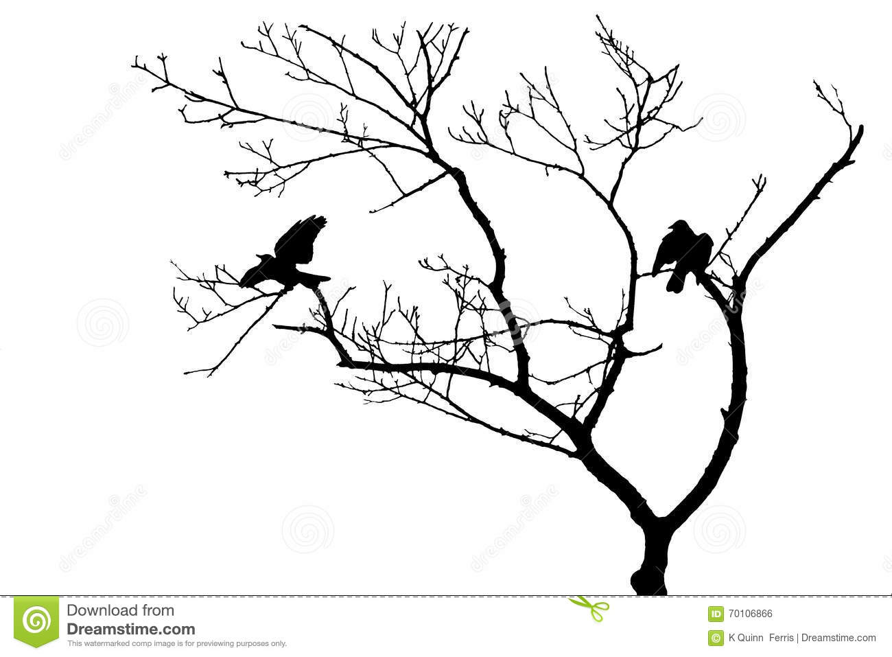 Birds In Tree Silhouette Isolated Stock Photo