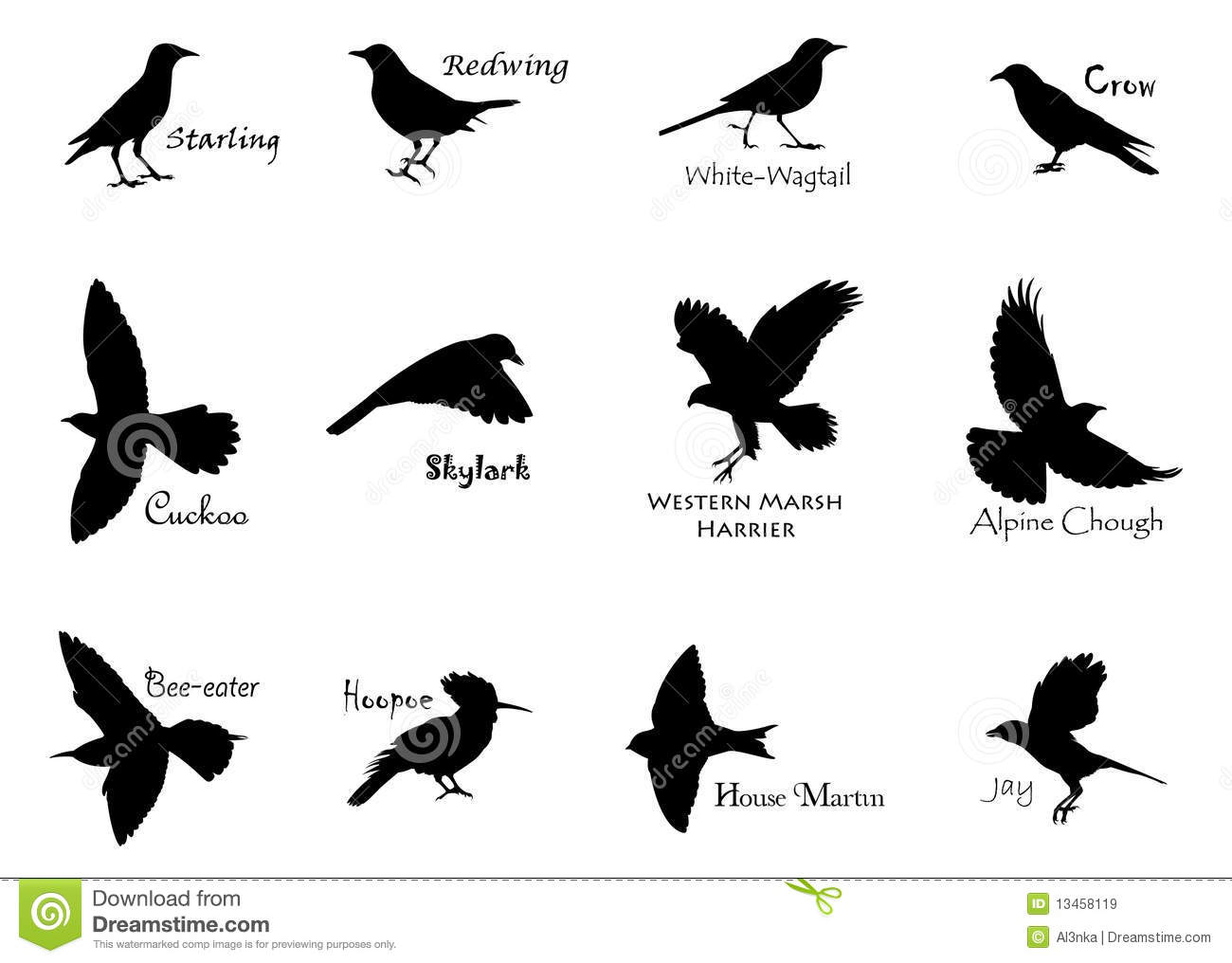 Black Birds Stock Vector Illustration Of Alpine Aloft