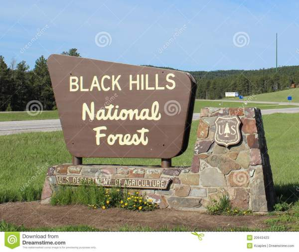 Top Black Hills National Forest On Us Map Galleries - Printable Map ...