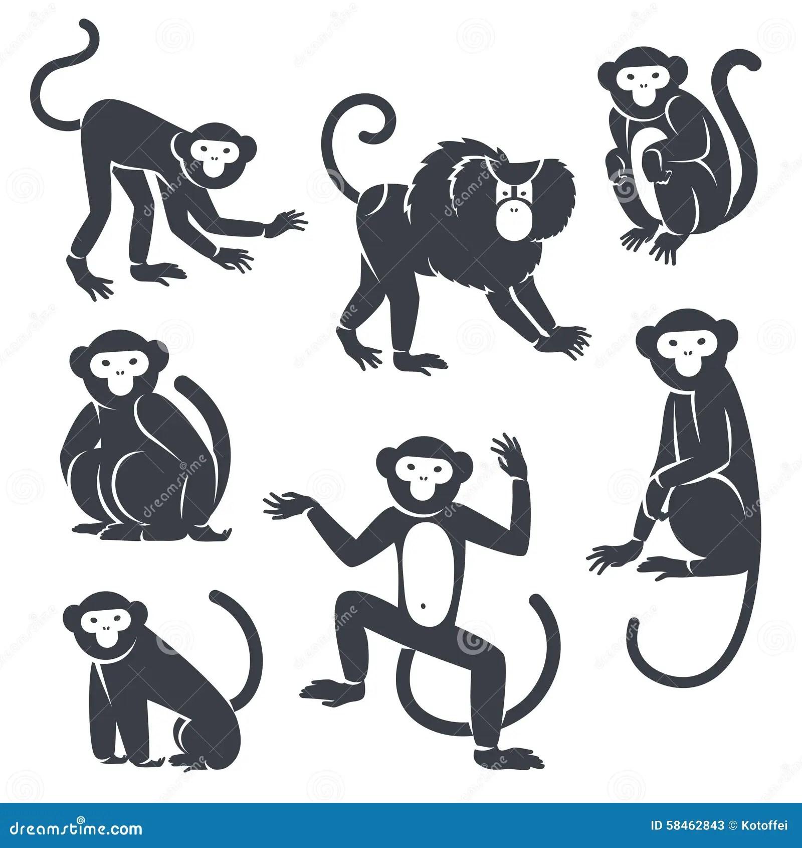 Black Monkeys Silhouettes On White Stock Vector