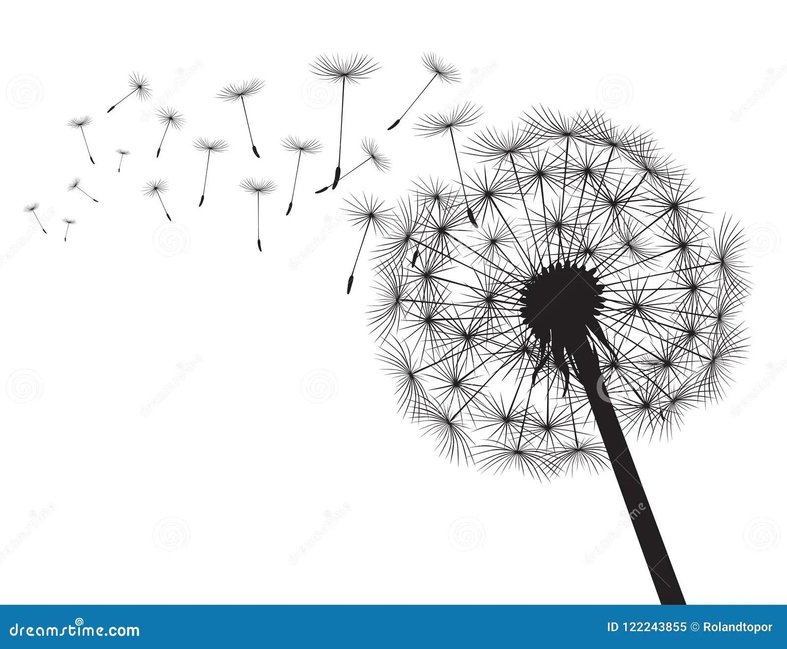 Black Silhouette Dandelions Vector Illustration Stock