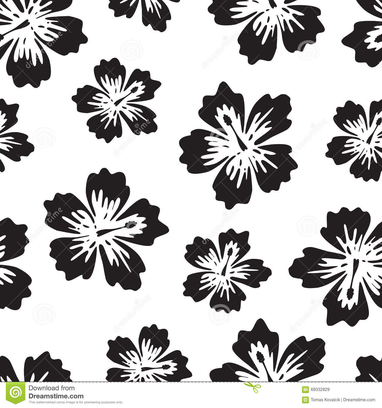 Black And White Background With Tropical Flower Stock