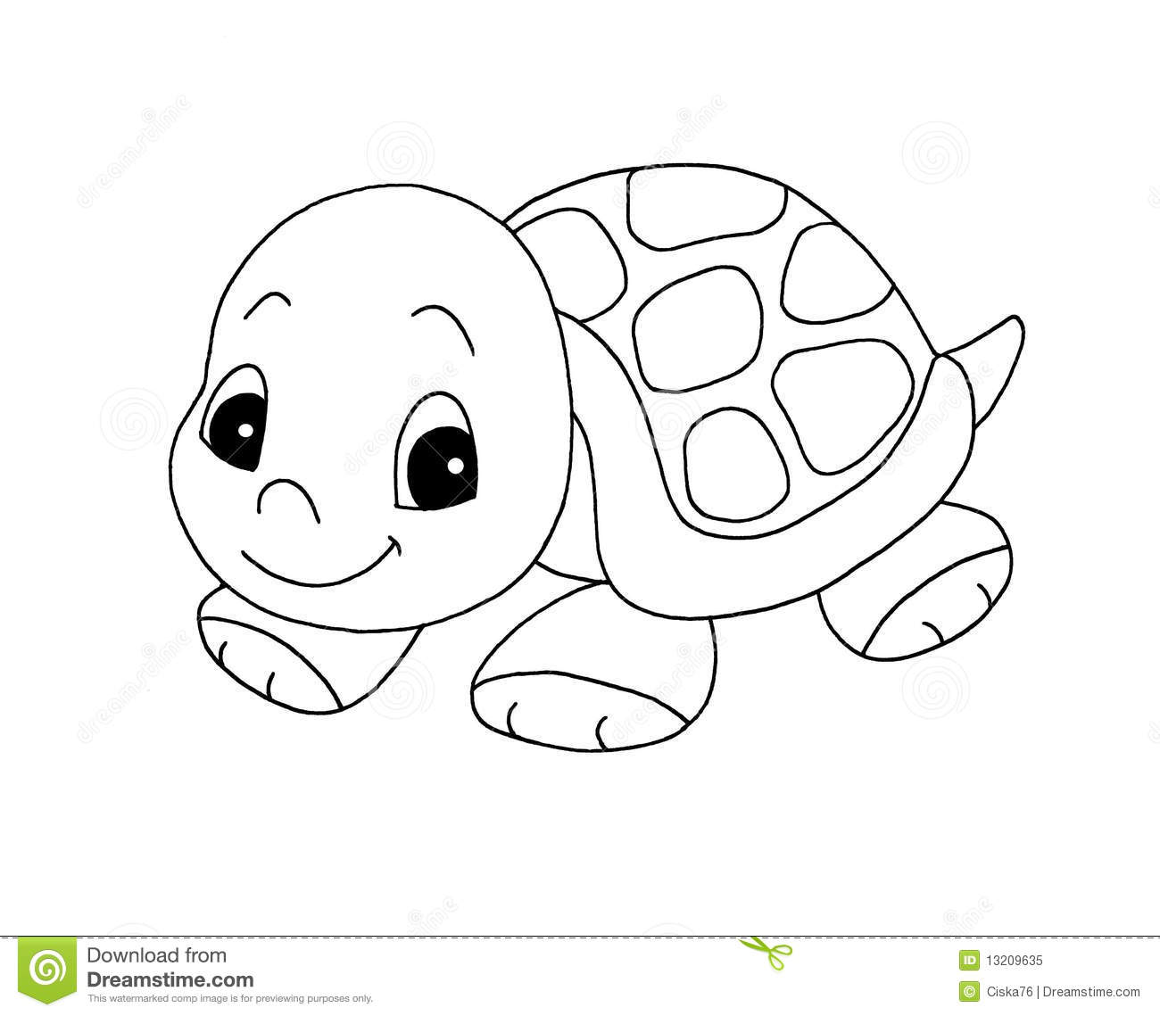 hight resolution of black and white cute turtle