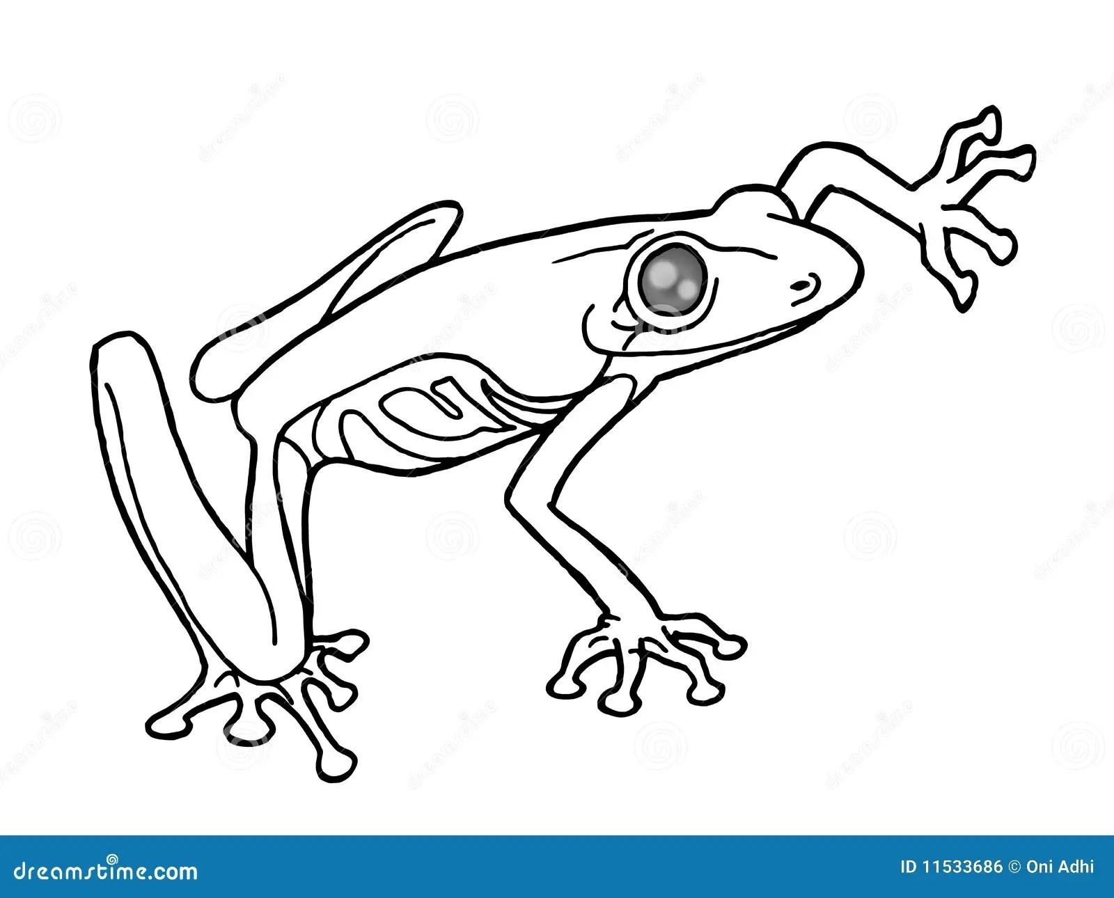 Black and white frog stock illustration. Illustration of