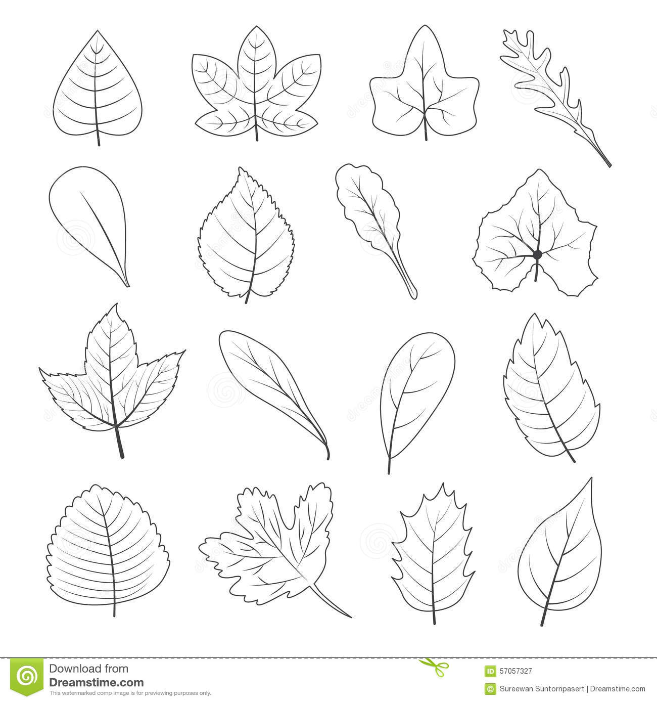 Black And White Leaves Shape Icon Set Stock Vector
