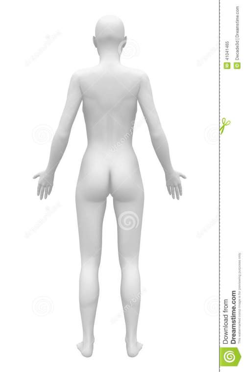 small resolution of blank anatomy female figure back view human body