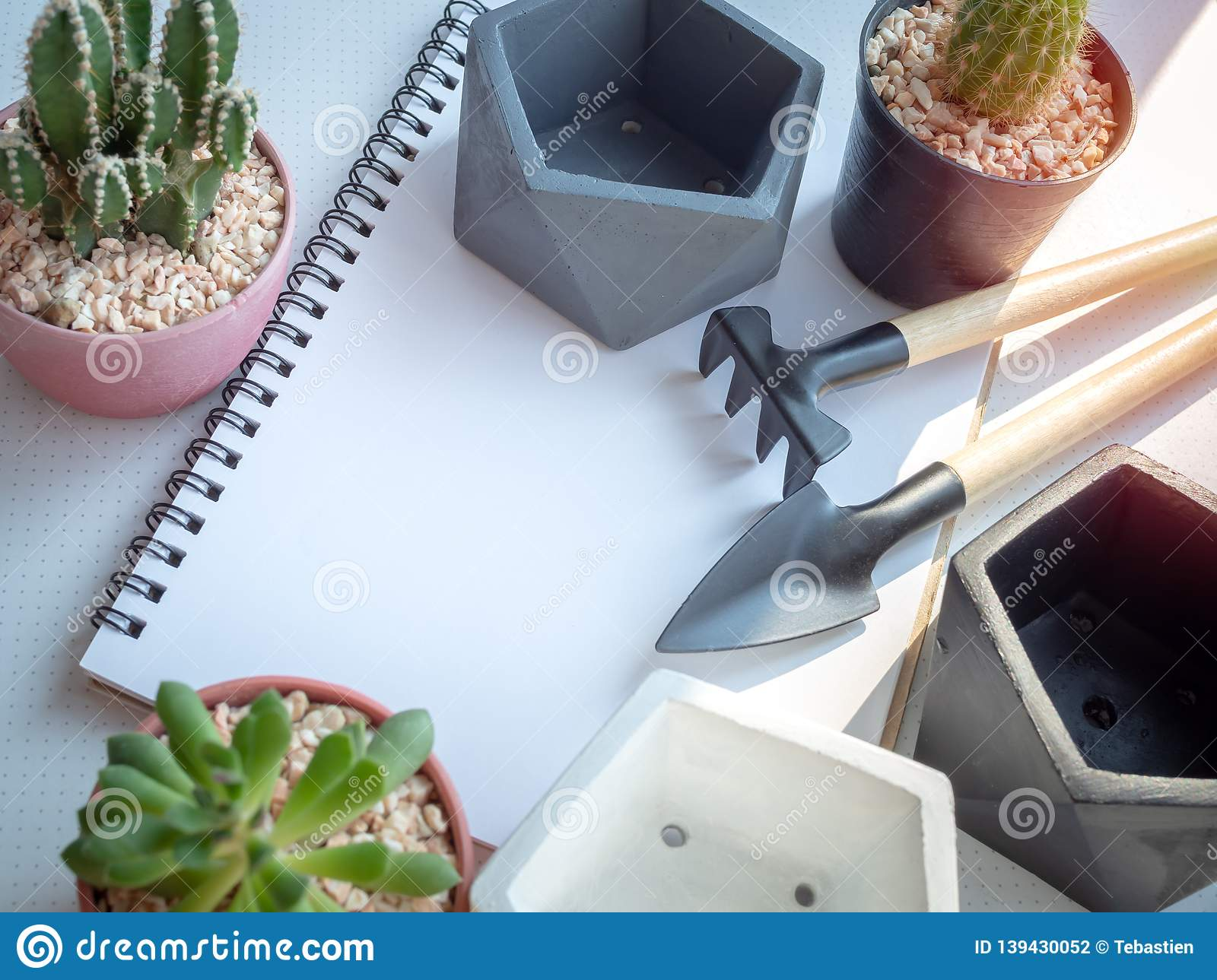 Blank Space On White Notebook With Cactus Plants Concrete Planters And Garden Tool Set On White Background Stock Photo Image Of Blank Minimalist 139430052