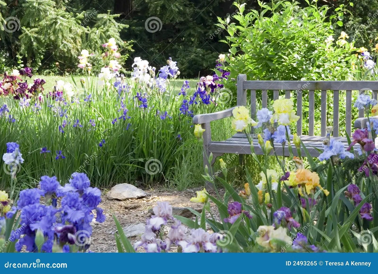 Blumen Garten 37 Reizend Blumen Garten