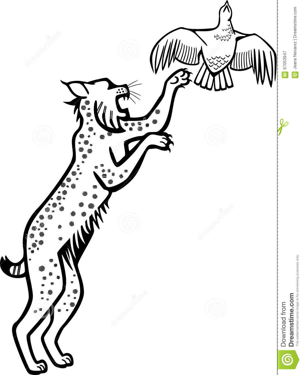 Bobcat Leaping After A Grouse Stock Vector