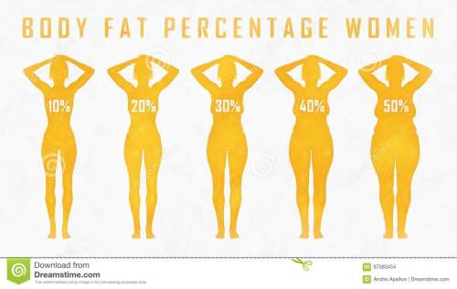 small resolution of body fat percentage woman