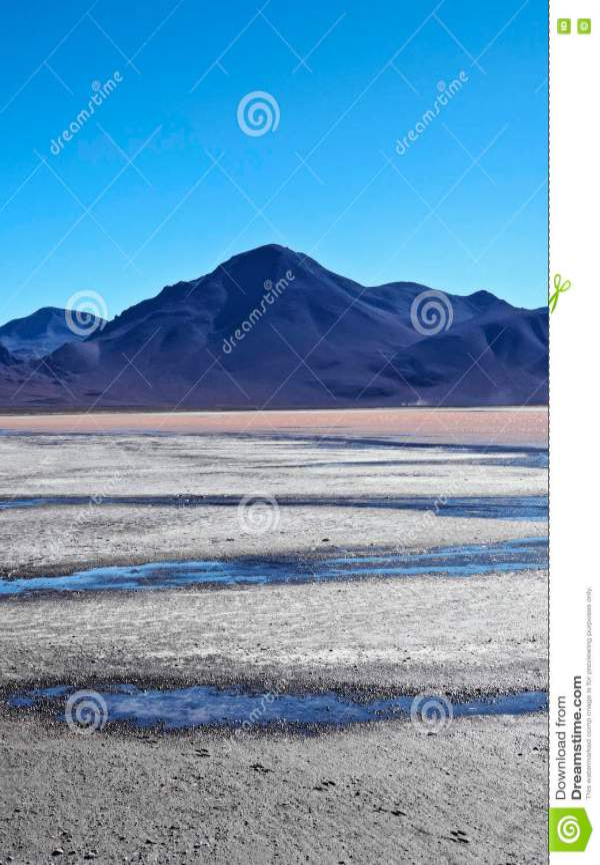 bolivian landscape stock