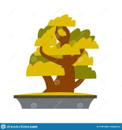 bonsai japanese cartoon vector tree growing in pot bonsai isolated clipart asian plants cultivation technique greenery gardening  [ 1600 x 1689 Pixel ]