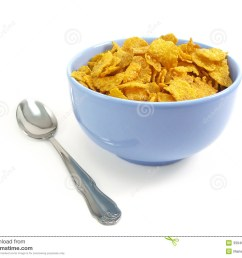 bowl of cereal with spoon [ 1300 x 1065 Pixel ]