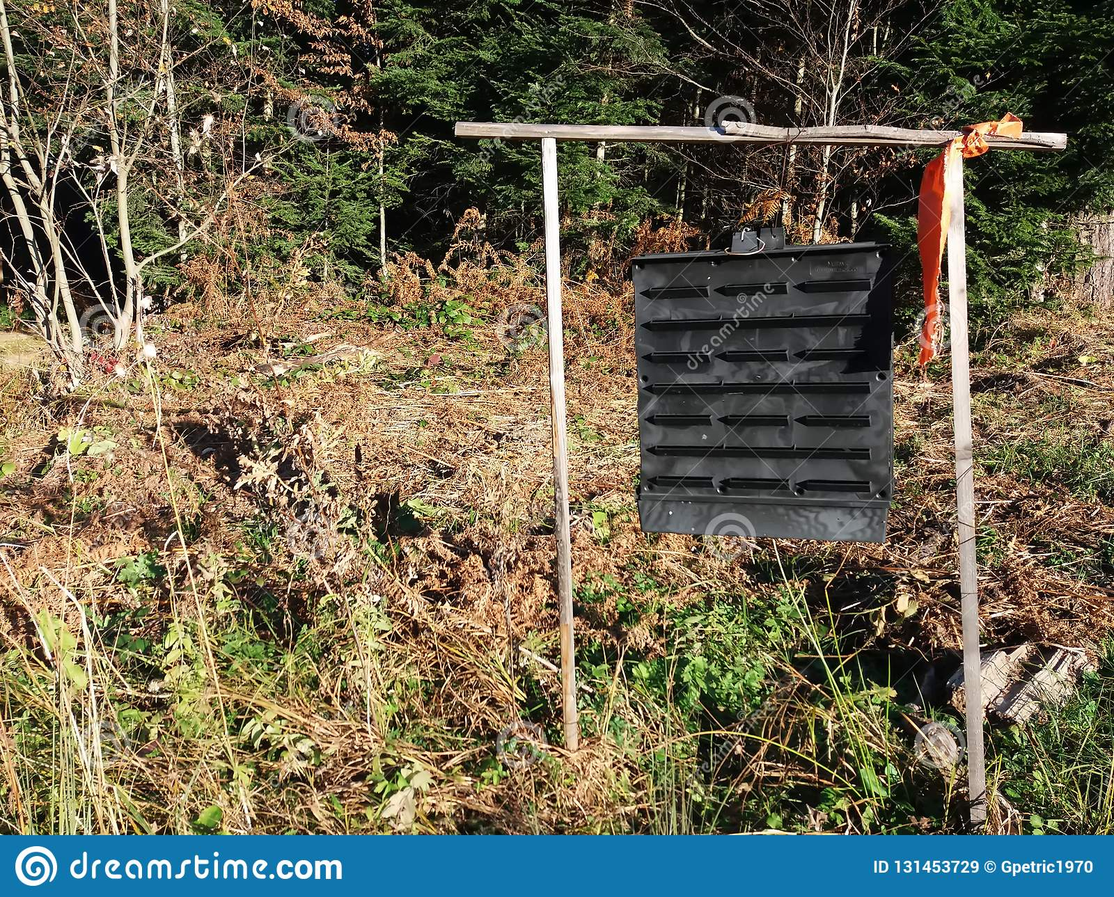 hight resolution of box with insect pheromones in the forest trap for great spruce bark beetle