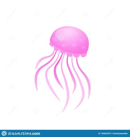 small resolution of box jellyfish icon clipart image isolated on white background