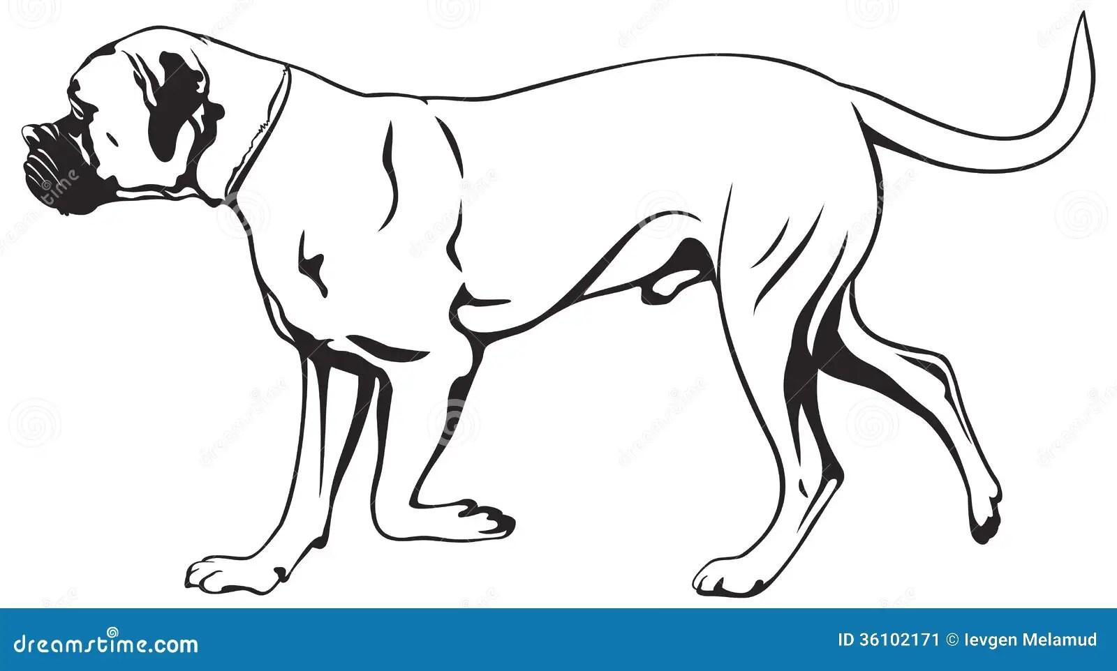 Guard Dog Security Maximum Voltage Stealth Flashlight
