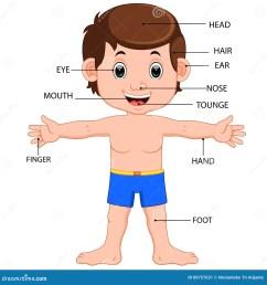 illustration of boy body parts diagram poster [ 1300 x 1390 Pixel ]
