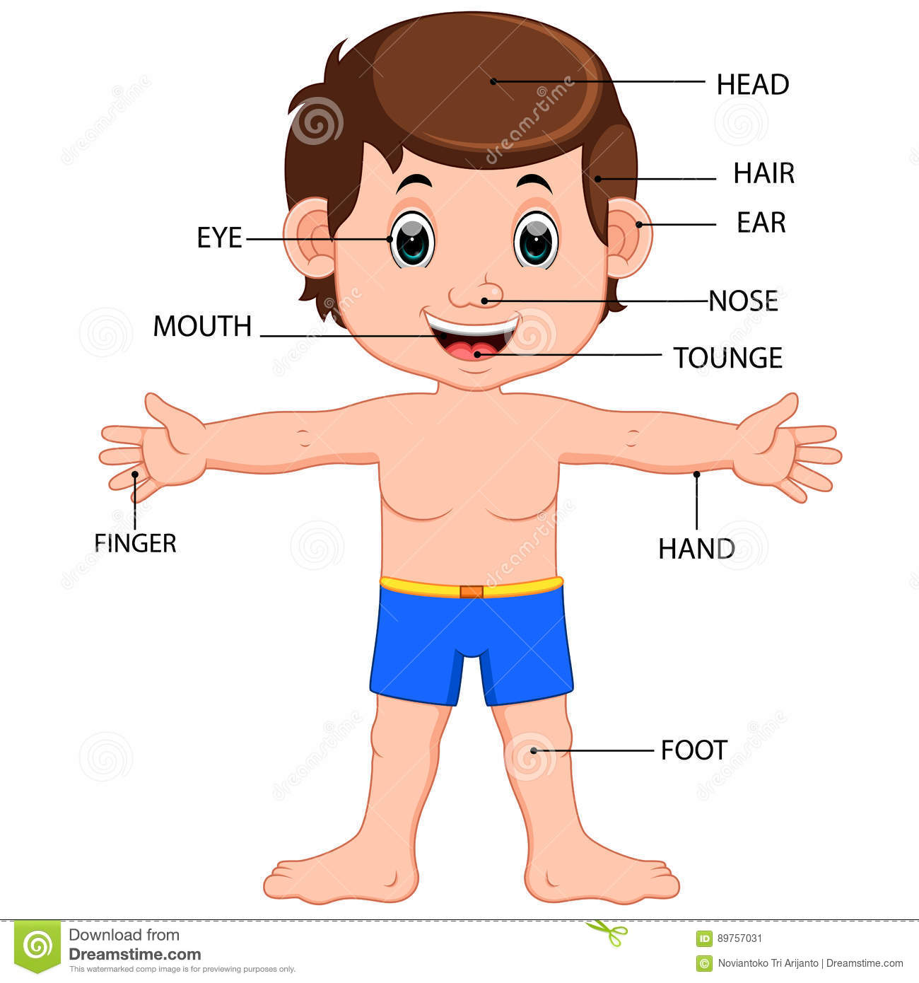 hight resolution of illustration of boy body parts diagram poster