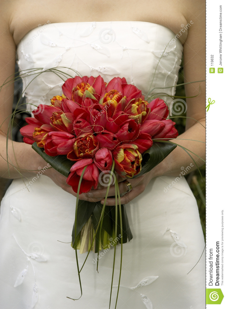 Bridal Bouquet Tulips Stock Photography  Image 119632