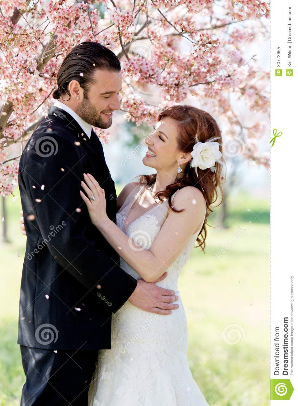 Bridal Couple Showered By Cherry Blossom Petals Stock