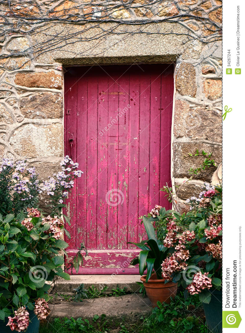 Bright Pink Paint Wood Door On Old Stone House Stock Photo