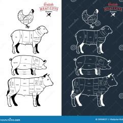 Beef Meat Diagram Rheem Electric Water Heater Thermostat Wiring Britisches Fleisch Schneidet Diagramme Vektor Abbildung - Illustration Von Auslegung, Grill ...