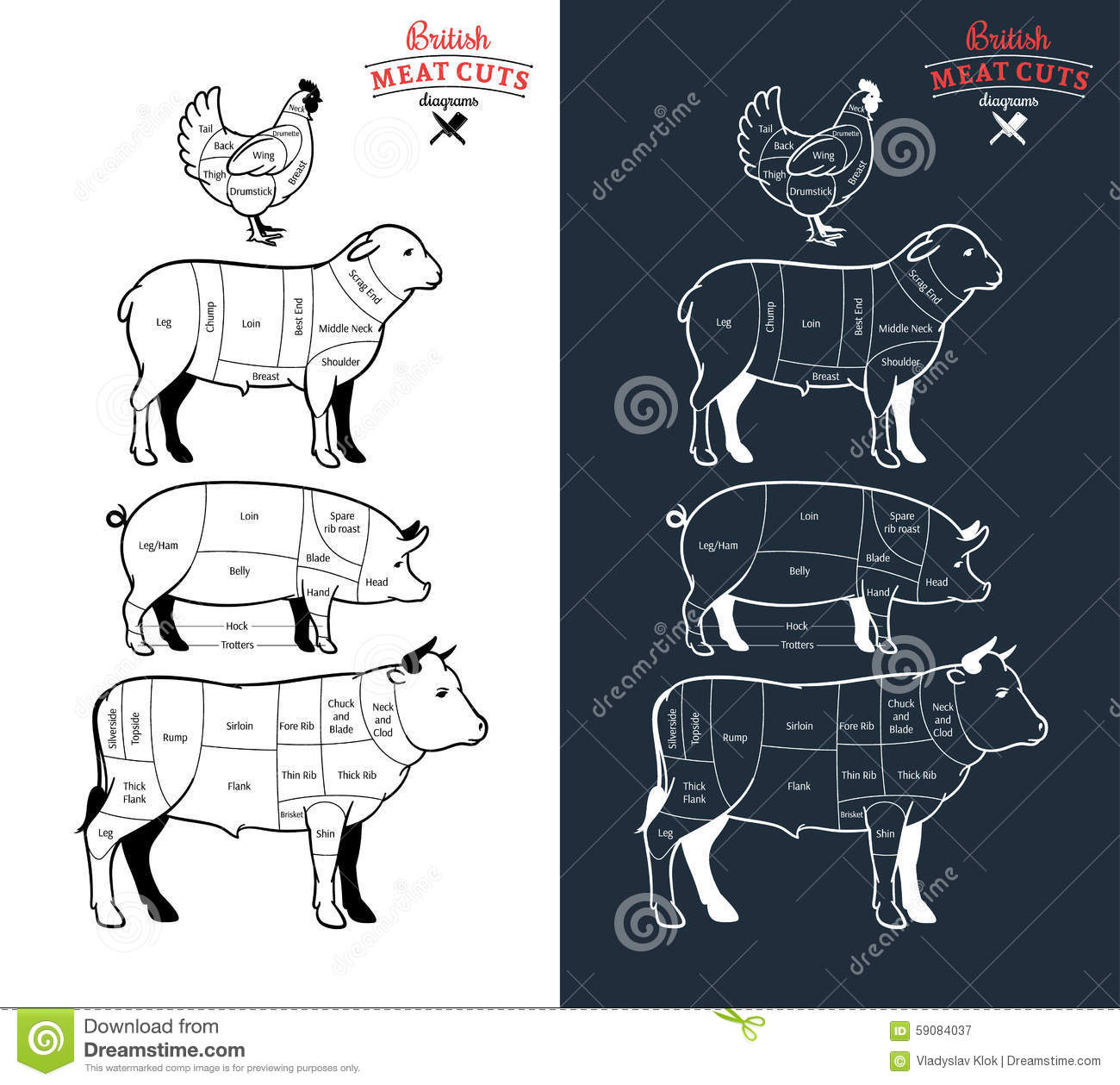 pork butcher cuts diagram wiring for rv battery isolator british meat diagrams stock vector illustration of beef lamb and chicken