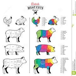 Pork Butcher Cuts Diagram Mitsubishi Rvr Ecu Wiring British Meat Diagrams Stock Vector Illustration Of Beef Lamb Rabbit And Chicken