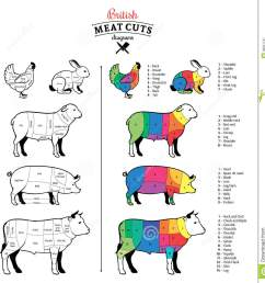british cuts of beef pork lamb rabbit and chicken diagrams [ 1334 x 1300 Pixel ]
