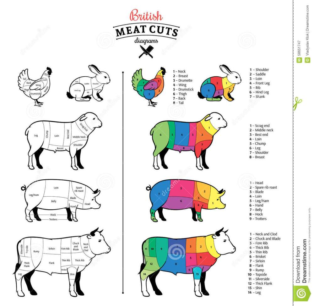 medium resolution of british cuts of beef pork lamb rabbit and chicken diagrams